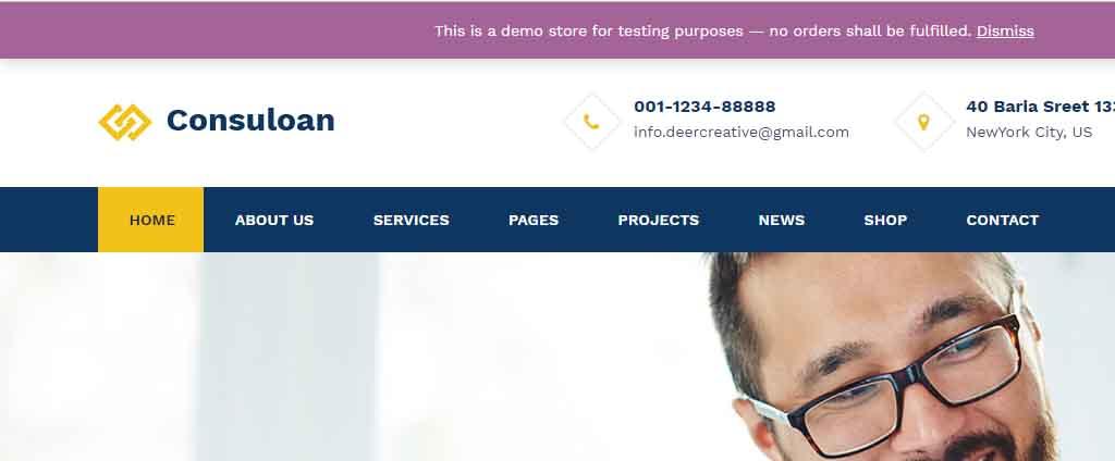 Multipurpose Consulting WordPress