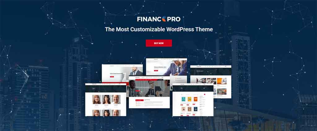 finance organization consultant theme