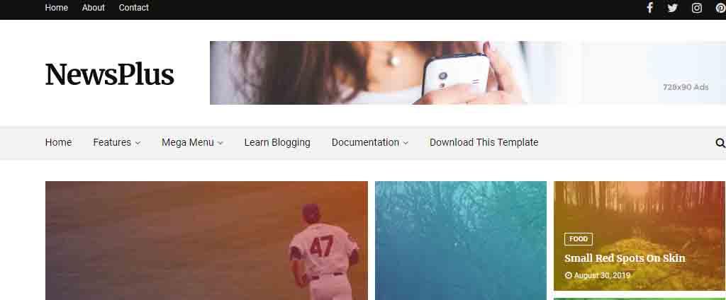 newspaper blogger theme