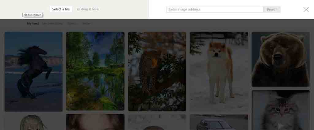 yandex upload image for reverse search