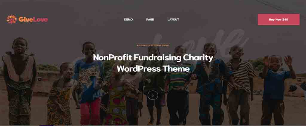 Charity & Crowdfunding WordPress