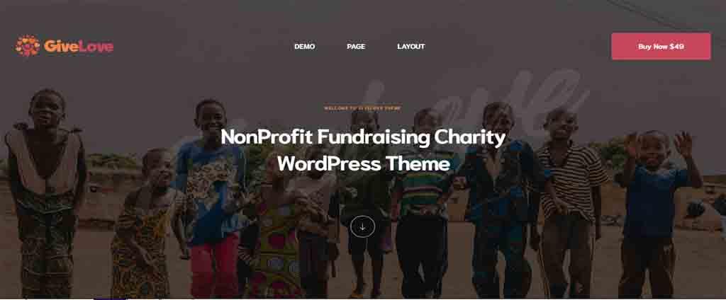 Charity & Crowdfunding WordPress