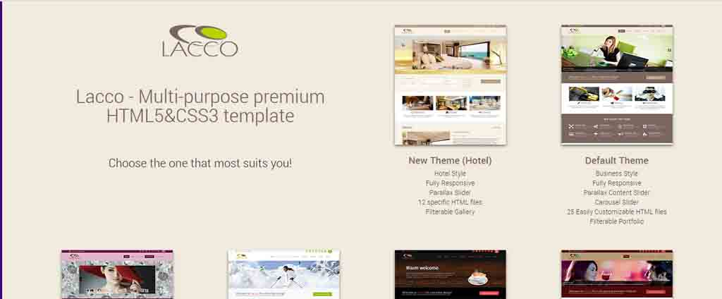 lasso multipurose html template