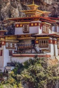 bhutan people whatsApp group