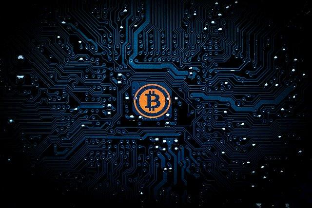 bitcoin business whatsApp group