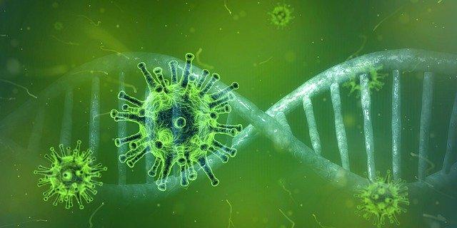 Corona virus support groups links