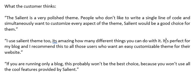 Salient Theme customer review