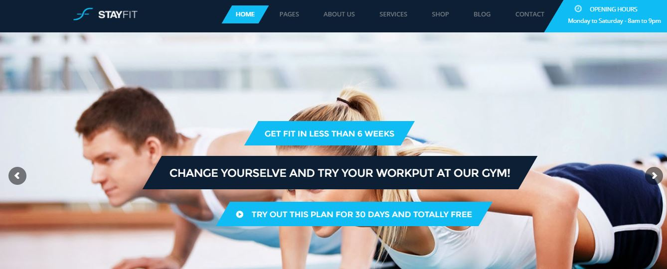 Stayfit is one of best WP theme for health,